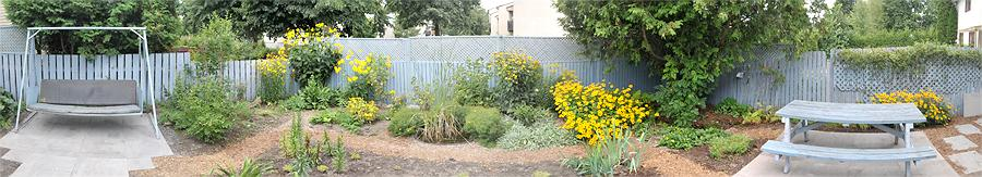 Back Fence Panorama September 2011